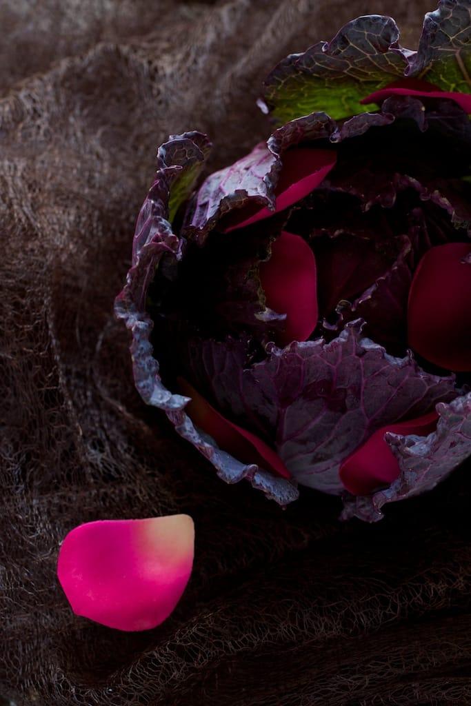 rose-violet-chou-petale_IMG_0034