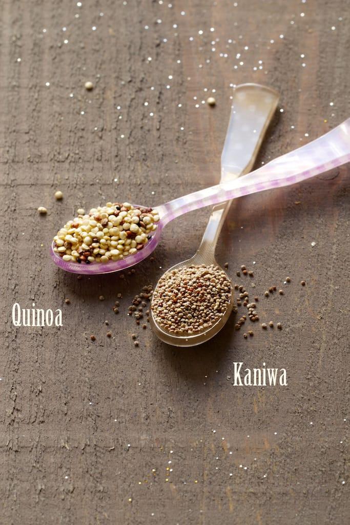 IMG_1005-r-quinoa