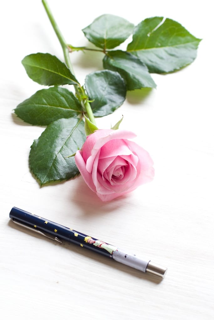 rose-enfance-avec-stylo-IMG_2612
