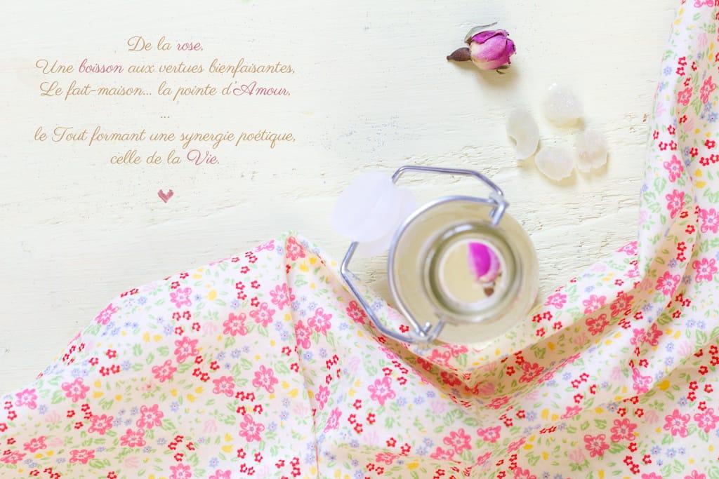 kefir-rose-vue-dessus-montage