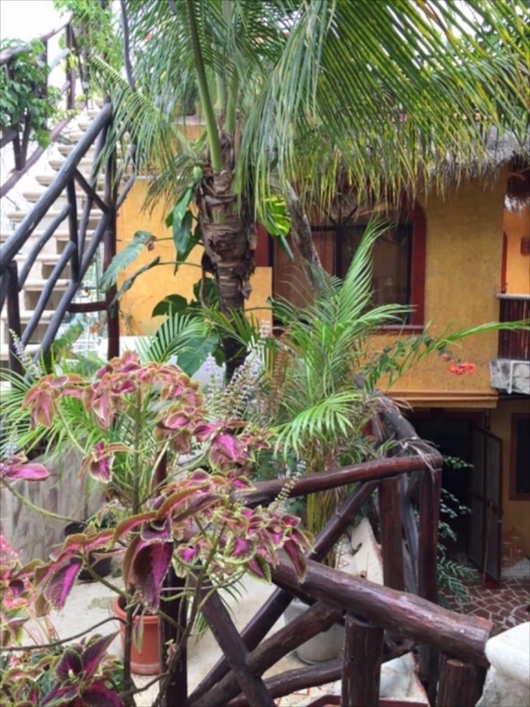 Tulum notre hotel 2