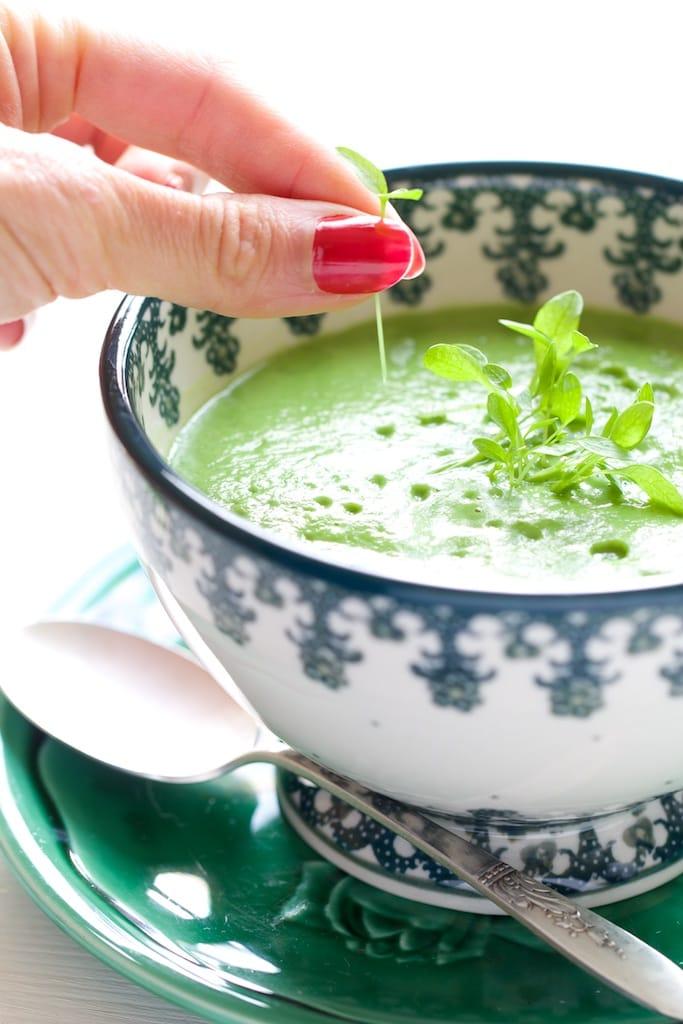 1-vue macro-2_soupe brocolis chlorella foie detox