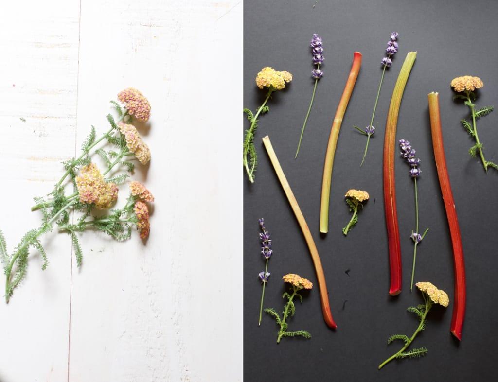 montage-achillee-millefeuille-herbe-saint-jean