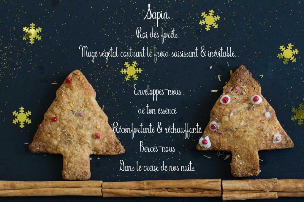 ecriture-cookies-SAPIN_V-noel-2015-6